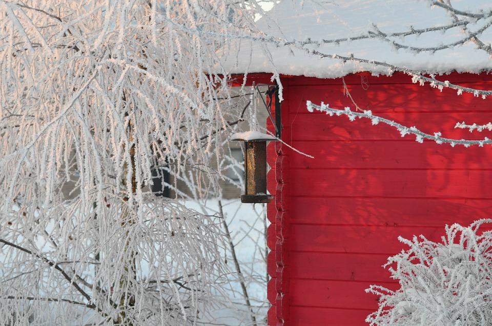 drewniany ogród zimowy